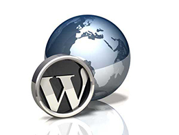Kursus Web CMS, Kursus Wordpress di Bali, Membuat template premium wordpress
